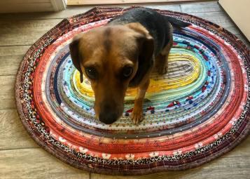 jellyroll rug 2